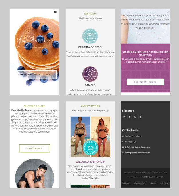 Your Diet Method Homepage Responsive